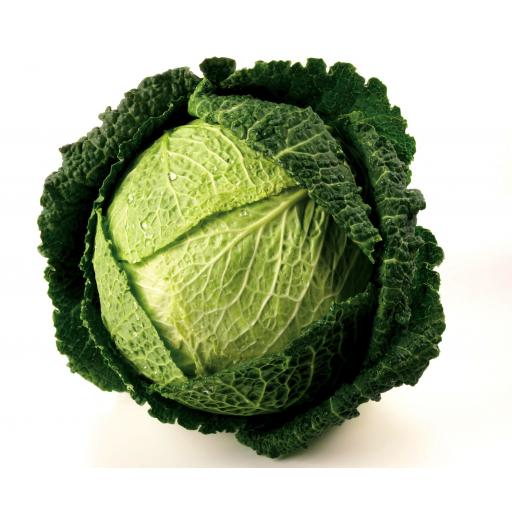 Savoy-Cabbage.jpg